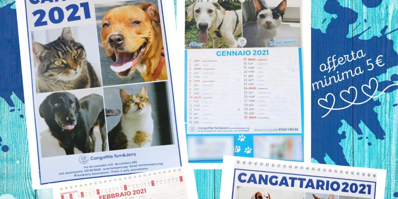 CANGATTARIO 2021