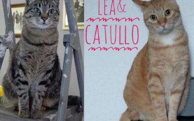 LEA E CATULLO